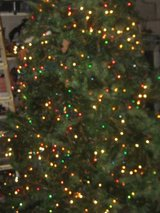 Christmas tree in Clarksville, Tennessee