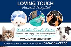 Excellent, Affordable Veterinary Care in Quantico, Virginia