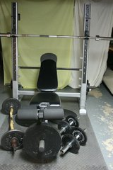 Pro Weight Bench + Weights in Naperville, Illinois