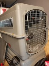 Airline approved dog kennels in Camp Lejeune, North Carolina
