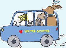 Affordable spay/neuter in Quantico, Virginia