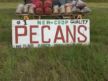 New Crop Pecans - Guaranteed Freshness in Conroe, Texas