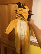 Lion Costume in Glendale Heights, Illinois