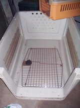 XXL Airline KENNEL-Hamster-Guinea pigs Items in Ramstein, Germany