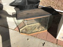 Reptile tank with two lids in Colorado Springs, Colorado