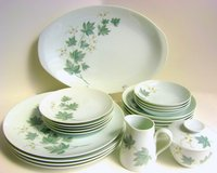 Noritake Wild Ivy China 45 piece Set in Elgin, Illinois