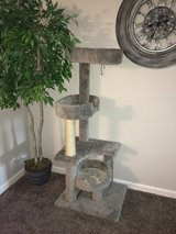 Scratching post in Fort Lewis, Washington
