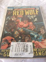Comics: RED WOLF Collection in Warner Robins, Georgia