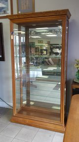 Glass Display Cabinet in Naperville, Illinois