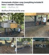 homemade chicken coop in Beaufort, South Carolina