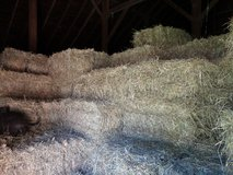 Horse Hay in Algonquin, Illinois