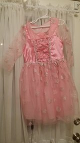 Pink Princess Costume in St. Charles, Illinois