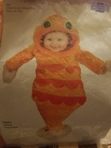 Infant goldfish costume in Kingwood, Texas