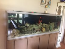 120 gal tank and all in Tinley Park, Illinois