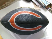Chicago Bears Football in Bolingbrook, Illinois
