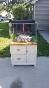 36 Gallon Acrylic Bow Front Fish Tank in Charleston, South Carolina