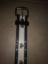 Skull studs belt in Spring, Texas