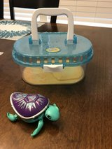 Reduced: Little Live Pets Turtle in Chicago, Illinois