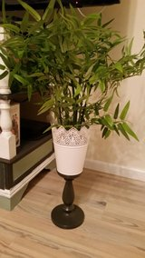 Fake plant w/ stand (2) in Baumholder, GE