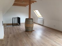 Renovated House 14 Miles to Ramstein in Ramstein, Germany