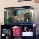 Fish tank and extras in Travis AFB, California