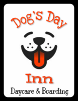 *Dog's Day Inn* Open for Thanksgiving! Holiday Savings Inside! in El Paso, Texas
