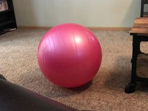 Pink yoga exercise ball in Plainfield, Illinois