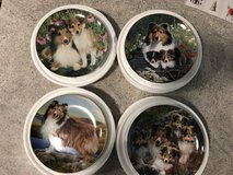 Sheltie plates set of 4 in Keesler AFB, Mississippi