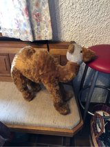 Vintage!!!!  Large Stuffed Camel from Tunisia in Ramstein, Germany
