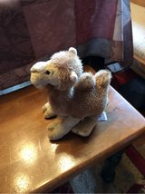 Stuffed Camel Toy in Ramstein, Germany