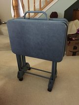 Set of 4 Tray Tables with Storage Cart in Sugar Grove, Illinois