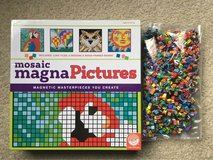 Mosaic Magna Pictures in Naperville, Illinois