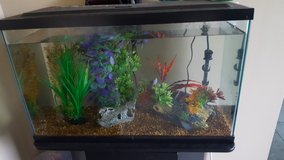 30 gal Tank, Stand, Supplies in Fort Drum, New York