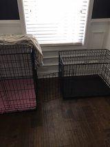 puppy kennel in Columbia, South Carolina