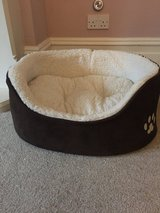 Dog Bed in Lakenheath, UK