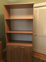 Bookcase with doors in Palatine, Illinois