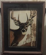 Deer Picture W/Nice Frame in Alamogordo, New Mexico