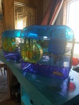 Hamster cages in Alamogordo, New Mexico