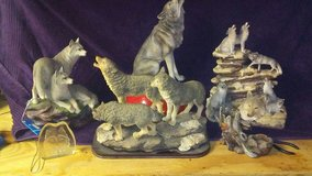 wolf collection in Fort Polk, Louisiana
