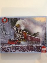 1000 piece puzzle in Tinley Park, Illinois