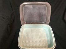 Tupperware Large Season N Serve Marinator Aqua Base w Sheer Lid in Glendale Heights, Illinois