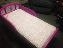 Frozen toddler bed in New Lenox, Illinois