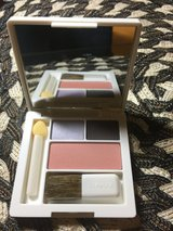 Clinique eyeshadows and blush in Plainfield, Illinois