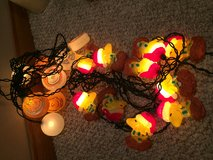 Charlie Brown and Woodstock Christmas lights. in Plainfield, Illinois