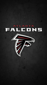Falcon Tickets in Warner Robins, Georgia