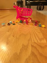 Shopkins Shopping Cart in Bolingbrook, Illinois