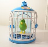 Little Live Pets bird and birdcage in Elgin, Illinois