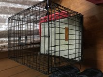 Metal Cage for dogs in Okinawa, Japan