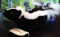 Remote control Skunk in Orland Park, Illinois