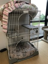 Large indoor cat cage in Okinawa, Japan